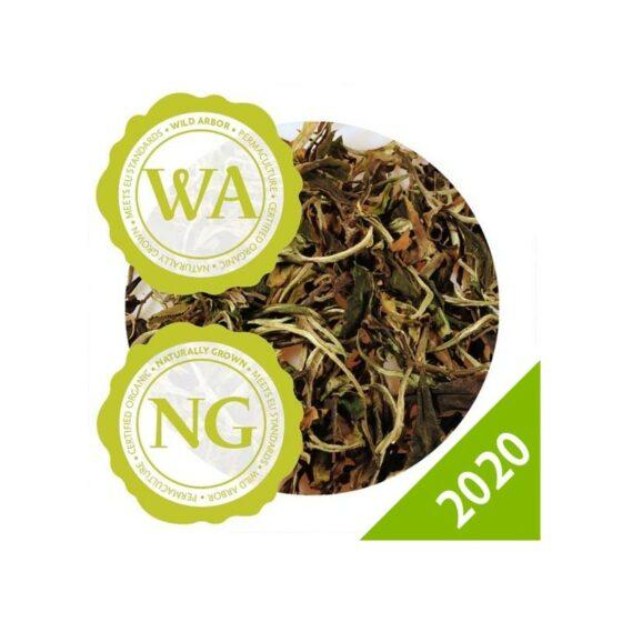 DHARA WHITE TEA